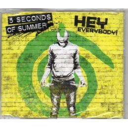 5 Seconds of Summer - Hey...