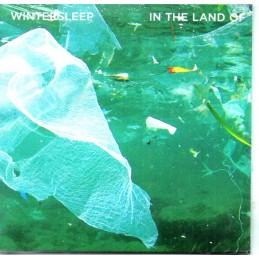 Wintersleep - In The Land...